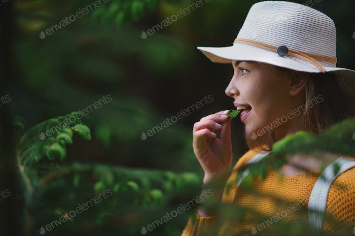 Young woman on a walk outdoors in forest in summer nature, eating spruce shoots
