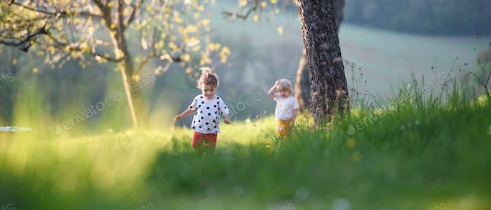 Small children boy and girl playing outdoors in spring nature