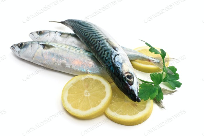 three mackerel with lemon and parsley