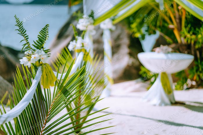 Decorated romantic wedding celebration accessories on tropical sandy beach. Lush green foliage and