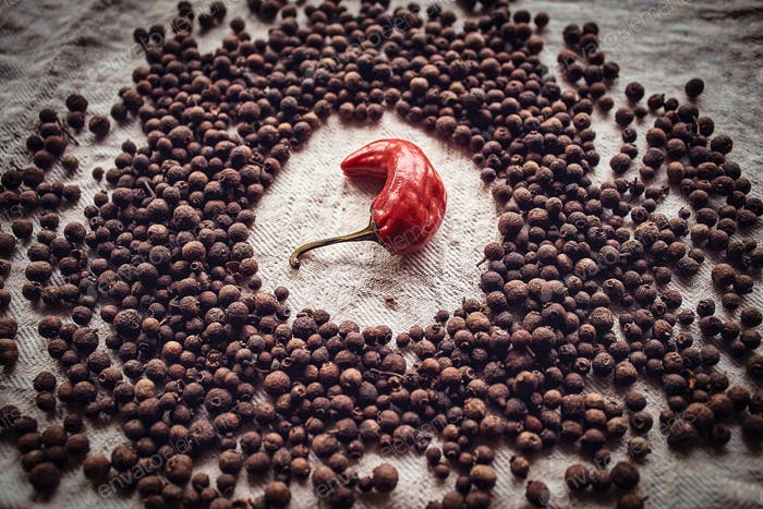 Close-up photo of hot red pepper surrounded by black pepper on linen fabric. Spicy concept.