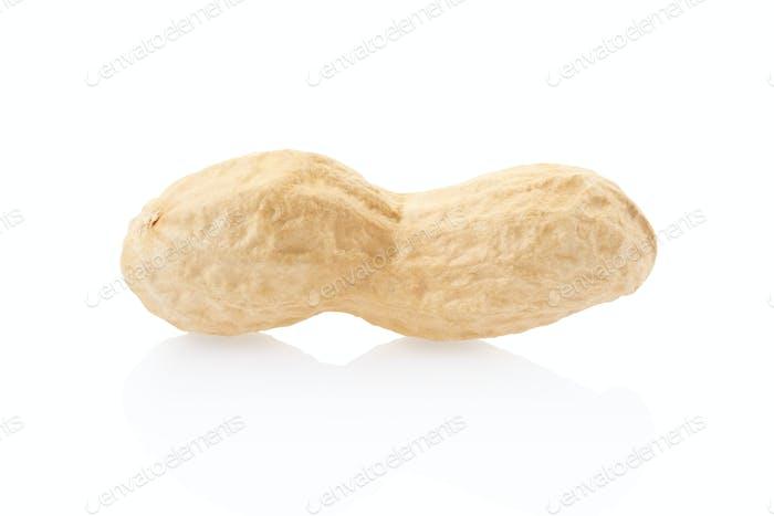 Peanut single