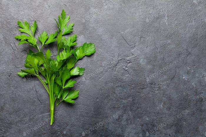 Garden parsley herb
