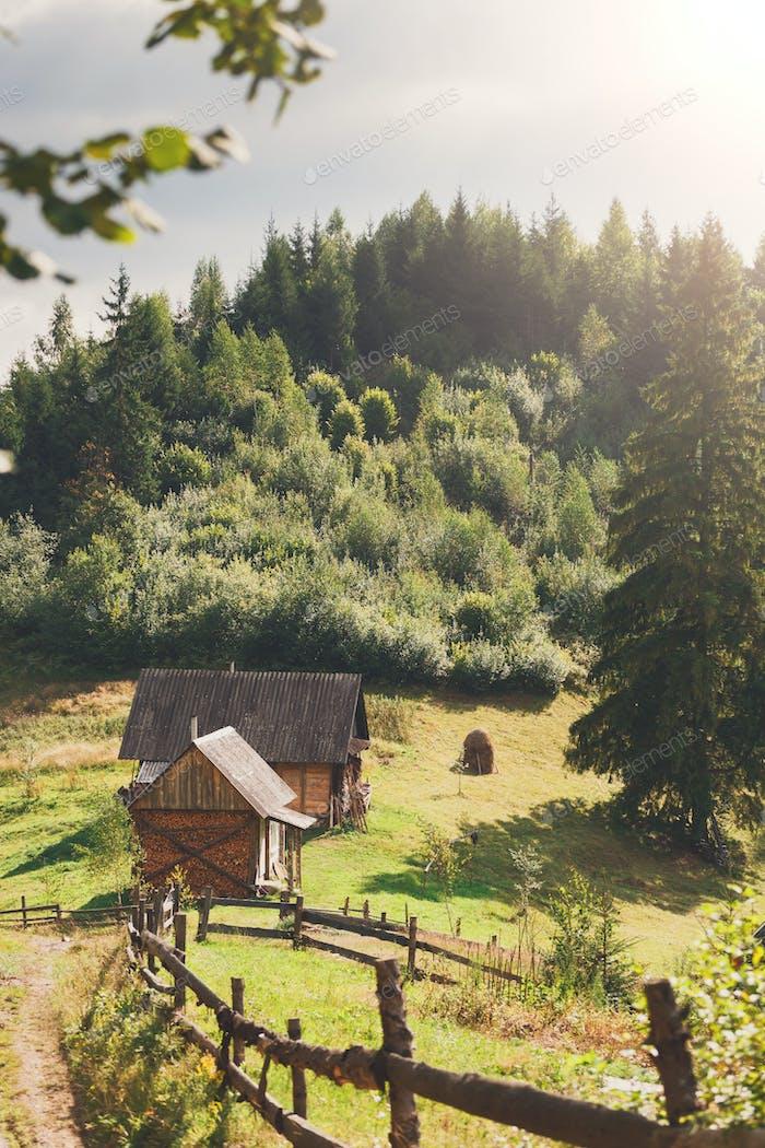 Beautiful rural landscape in sunlight, background