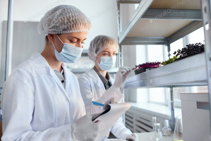 Scientists Studying Plants in Bio Laboratory