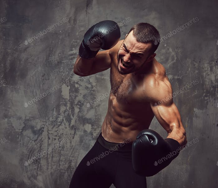 A brutal muscular boxer with boxing gloves working on punching technique.