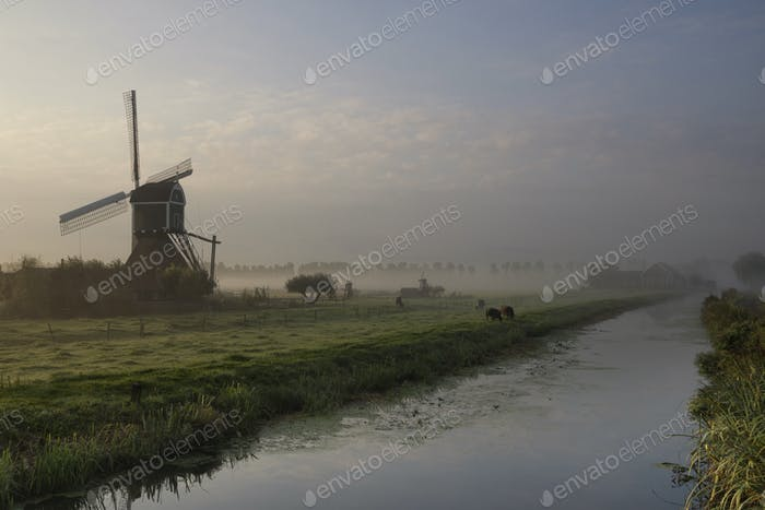 Wingerdse mill in misty morning atmosphere