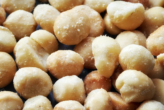 Close up picture of macadamia nuts.