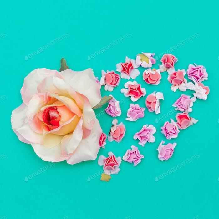 Roses flowers .Flat lay minimal art Spring mood