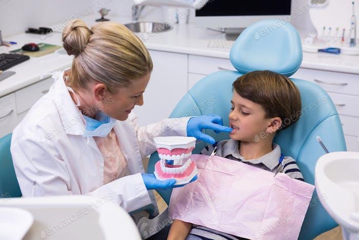 Hohe Winkelansicht des Zahnarztes hält Zahnform während der Untersuchung Junge