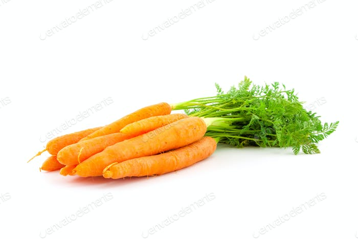 Fresh organic carrots on white background