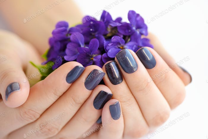 Hands of a woman with dark manicure on nails and bouquet of violets on a white background