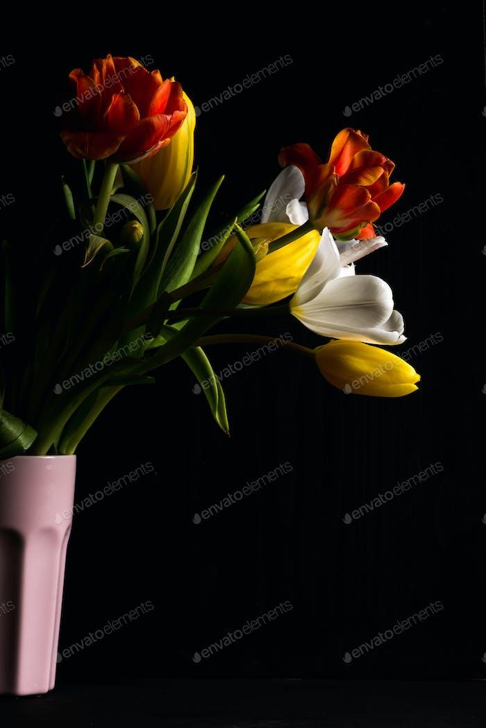 Schöner Blumenstrauß von bunten Tulpen in rosa Vase auf schwarzem Hintergrund