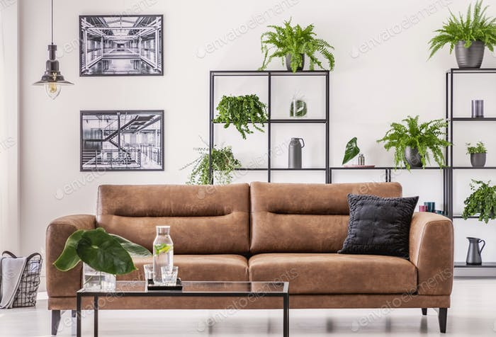 Brown leather sofa in the middle of elegant living room with urb