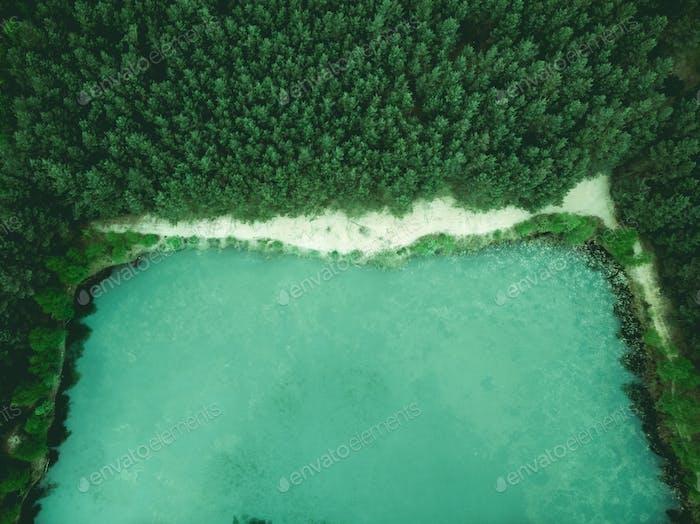 Wild pond in forest, birds eye aerial drone view