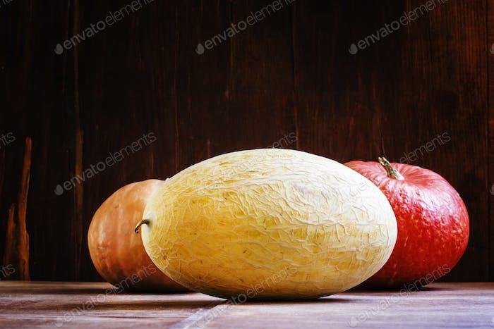 Large Uzbek melon and pumpkin