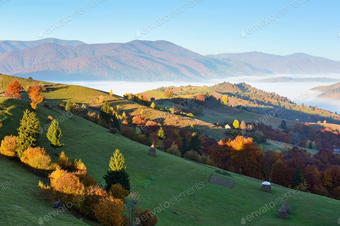 Beautiful autumn mountain landscape in the morning light with fo