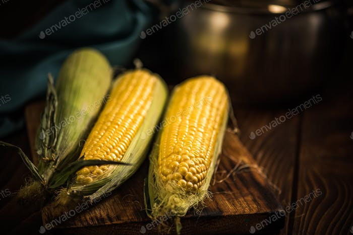 Golden corn whole cob