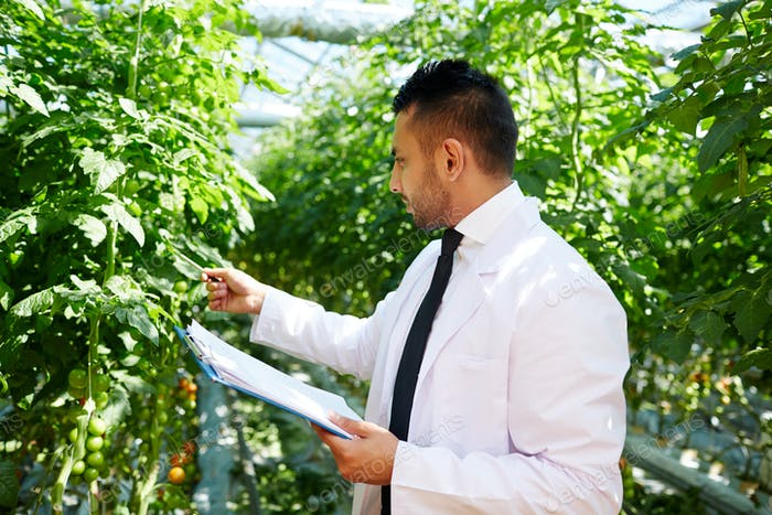 Агроинженер на работе