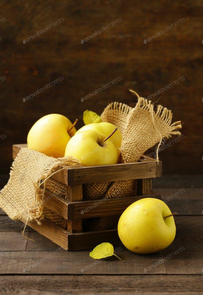 Reife gelbe Bio-Äpfel
