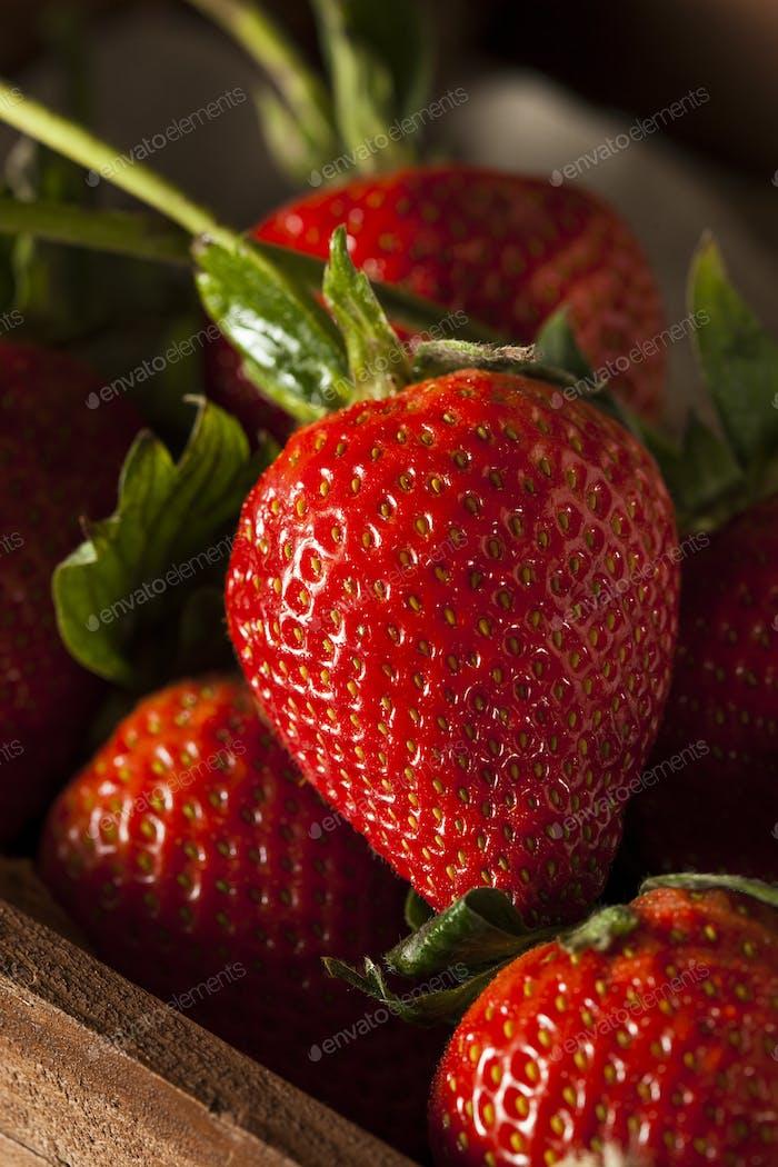 Thumbnail for Raw Organic Long Stem Strawberries