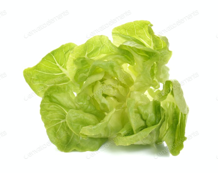 Fresh lettuce salad,Fresh vegetable salad on white background.