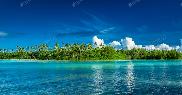 Tropical Rarotonga with palm trees and sandy beach, Cook Islands