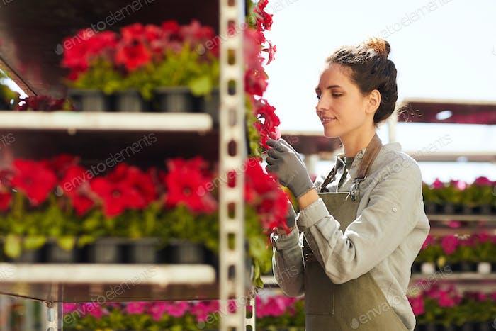 sonriente joven mujer disfrutando trabajo en el mercado de flores