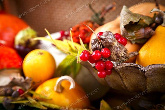 Autumn still-life.Decorative pumpkins,colorful leaves