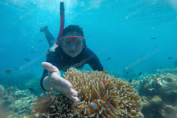 Snorkeling and playing with clown fish