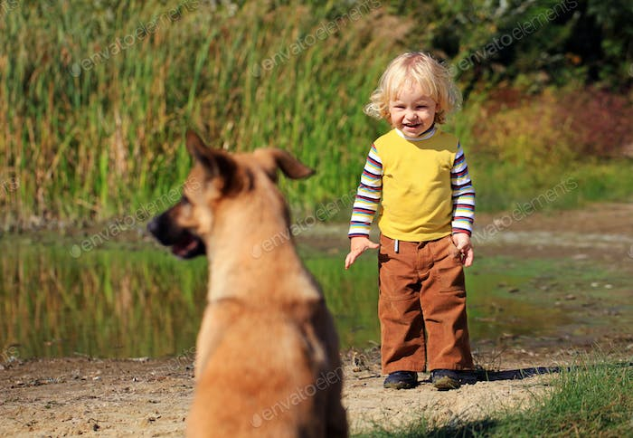 Little boy looking at a dog outdoors