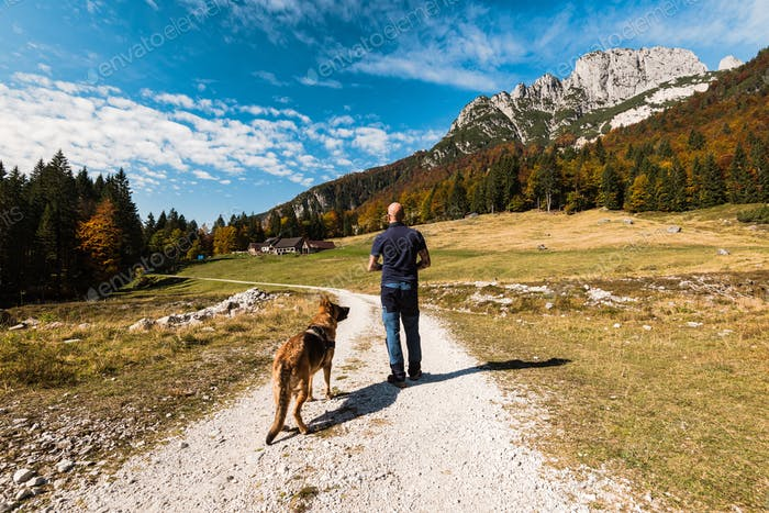 Man walking with dog in high mountains