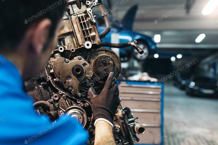 Professional Mechanic Repairing Car.