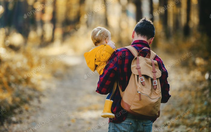 A rear view of father holding a toddler daughter in an autumn forest, walking.