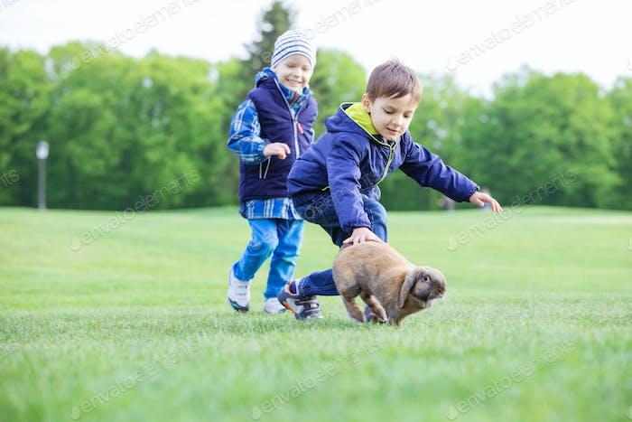 Preschool boys catching pet rabbit in park