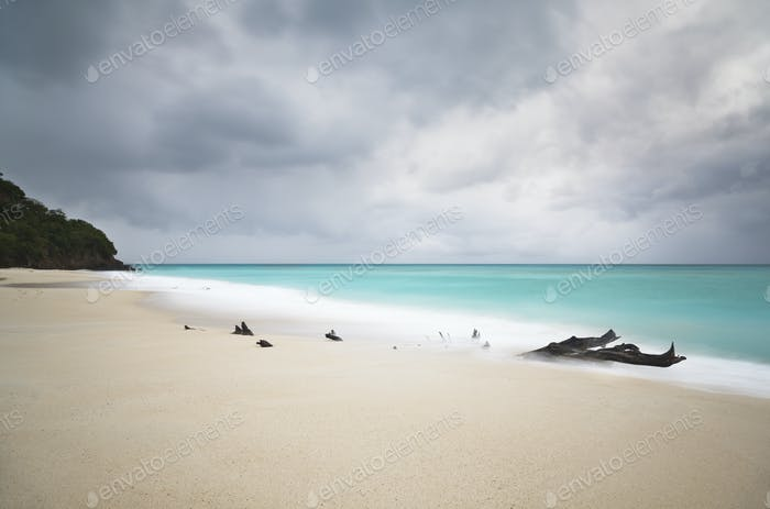 Stormy Caribbean Beach With Driftwood