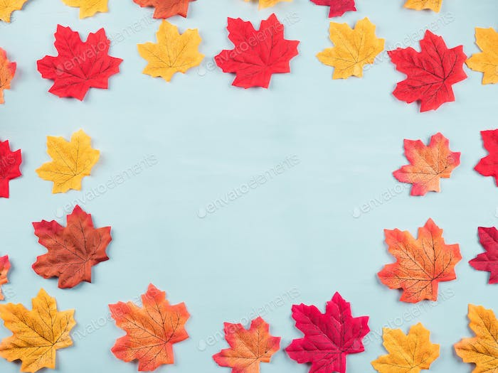 Colorful autumn maple leaves on turquoise