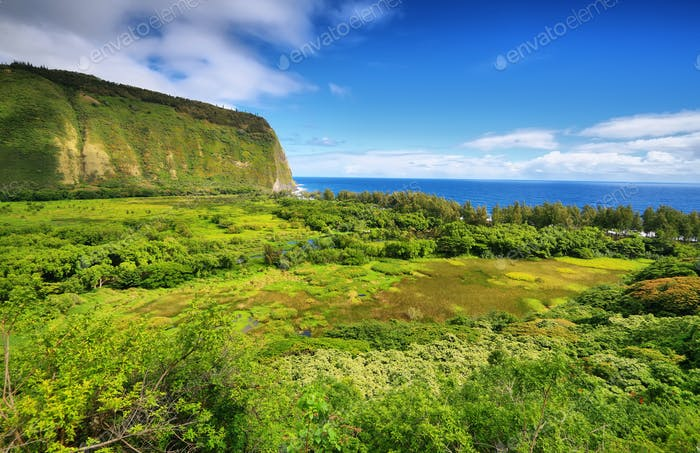 Waipio Valley view in Big island, Hawaii