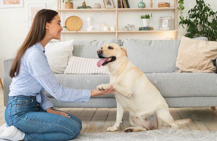 Mujer joven jugando con el perro en la sala de estar