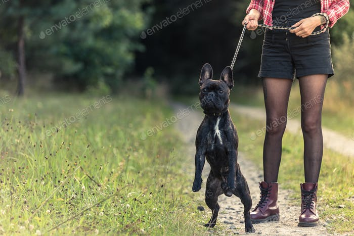Feamle with tattoo holding French Bulldog puppy on lead