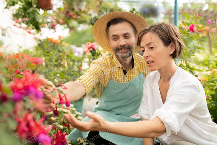 Mature gardener showing young woman new sorts of flowers
