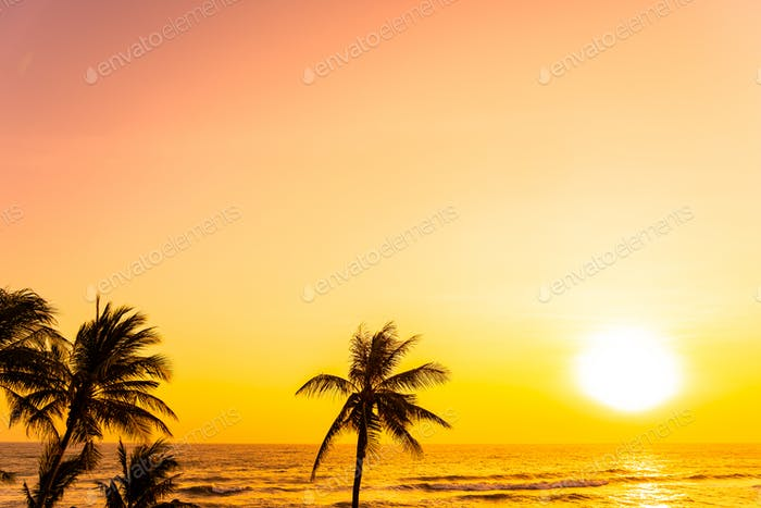 Beautiful tropical beach sea ocean at sunrise or sunset with palm tree