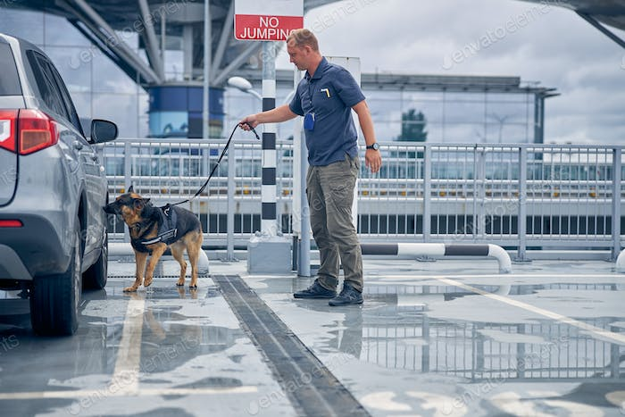 Officer with dog checking car at airport