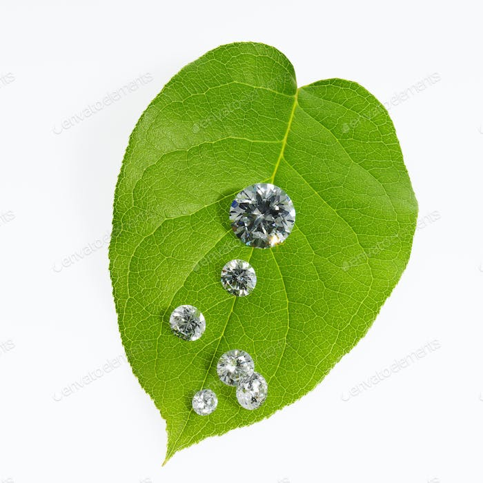 Still life, Green leaf foliage and gems cut with reflective surfaces,