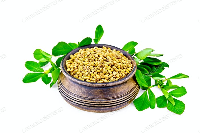 Fenugreek with green leaves in clay bowl