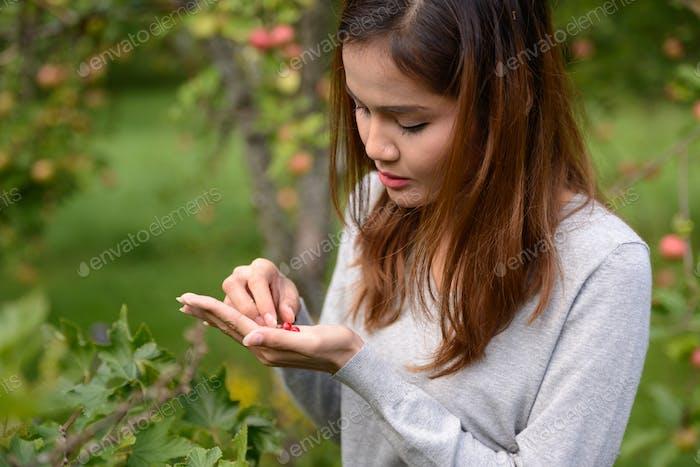 Young beautiful Asian woman harvesting fresh berries in nature