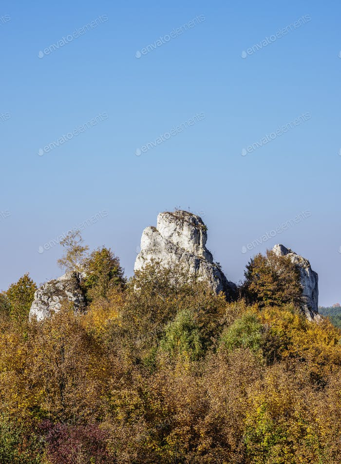 Rocks in Lutowiec, Polish Jura