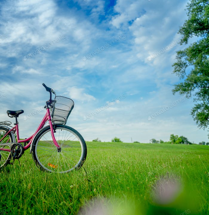 Female bicycle on green field
