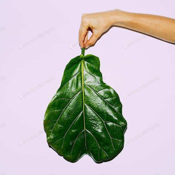 Leaf. Green concept. Minimal modern art