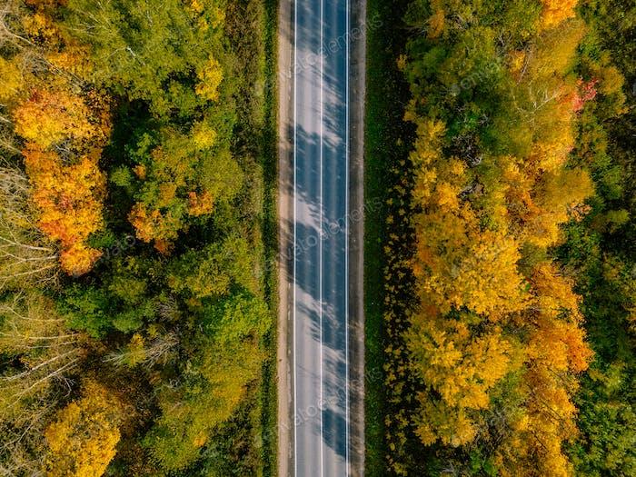 Luftaufnahme der Straße im Herbstwald. Schöne Landschaft mit ländlicher Straße